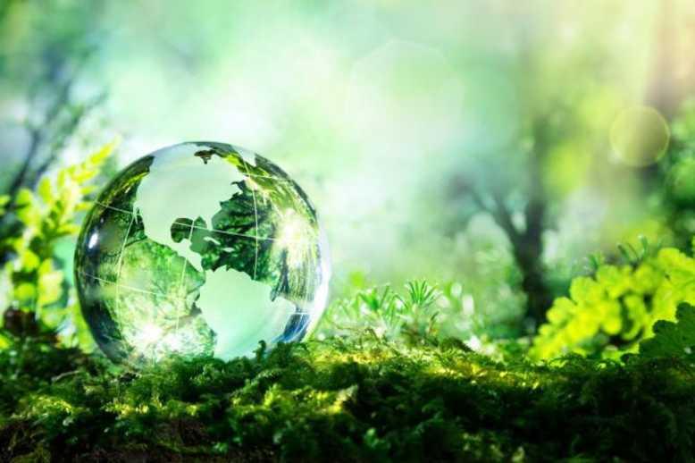 transformacao-digital e sustentabilidade